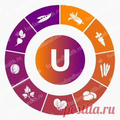 Витамин U В каких продуктах содержится витамин U (метилметионин) и для чего нужен организму человека? Профилактическое и лечебное применение: показания и противопоказания.