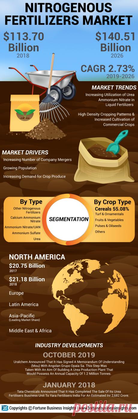 Infographics - Nitrogenous Fertilizers Market