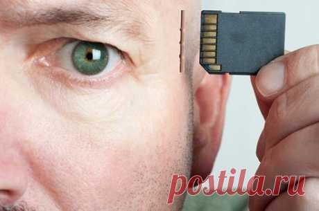 10 простых и действенных способов для улучшения памяти