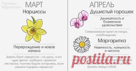 (+9) А какой Вы цветок?