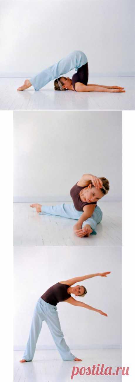 ВОЛШЕБНАЯ СИЛА РАСТЯЖКИ. Молодость тела можно оценить по его гибкости. Тот, чьи мышцы эластичны, а суставы подвижны, даже в пожилом возрасте чувствует себя лучше и бодрее своих сверстников. Почему гибкость так важна для организма и как правильно заниматься растяжкой