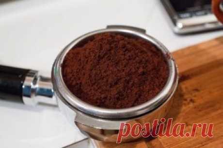 Что будет, если поджечь кофе в фольге, и Почему этот трюк пригодится всем дачникам