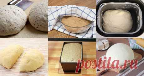 Тесто для хлеба - 13 рецептов приготовления пошагово Тесто для хлеба - быстрые и простые рецепты для дома на любой вкус: отзывы, время готовки, калории, супер-поиск, личная КК