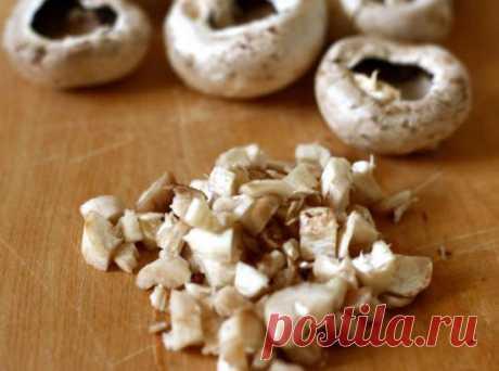 Виды съедобных грибов, используемых в западной кухне