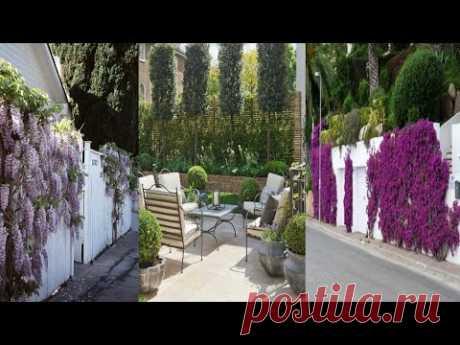 Как украсить забор идеи декора и озеленения