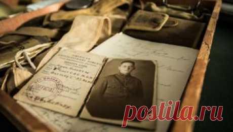 Как найти самых далеких предков и составить свою родословную - Новости Mail.Ru
