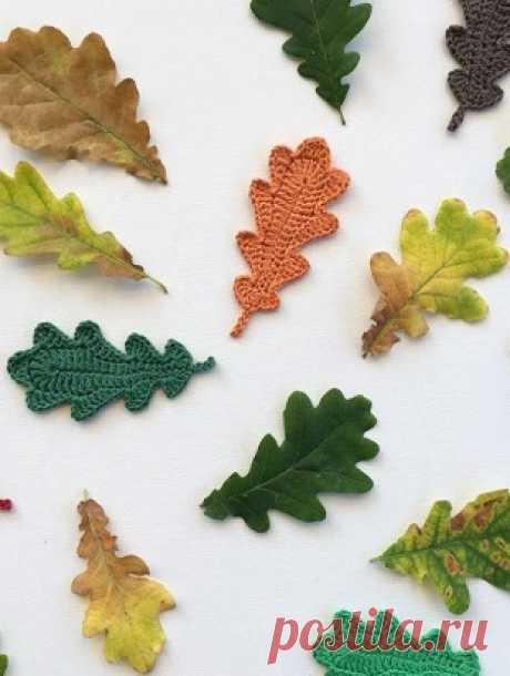 Декоративные узоры крючком  Лист дуба крючком  Осень - чудесное время года, которое разукрашивает все вокруг своими яркими красками! Осень дарит много идей для творческих воплощений. Одной из этих идей является - желание связат…