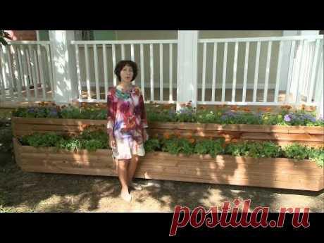 La hacienda. El parterre de dos niveles de flores. La salida de 31\/07\/2016