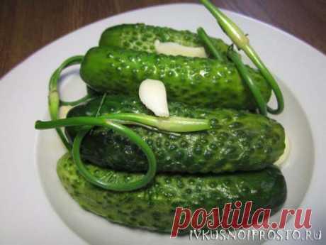 Быстрые малосольные огурцы - пошаговый рецепт с фото   И вкусно и просто