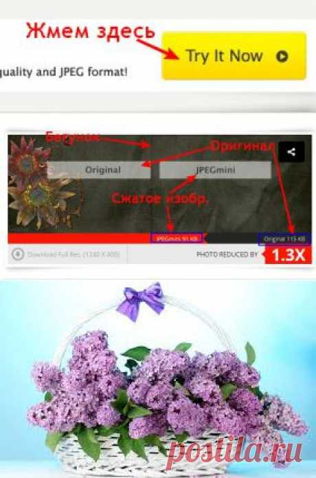 Сервисы, которые в считанные секунды сожмут любые картинки или фото без потери качества .