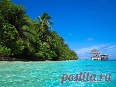 Остров Бора-Бора отличается своей лагуной с красивейшим подводным царством. Бора-Бора - это рай для любителей дайвинга. Погружаясь в богатый подводный мир, можно встретить ярких тропических рыбок, скатов и барракуд. А акул можно даже покормить, разумеется, в присутствии инструктора. Бора-Бора - великолепный остров со своей волшебной атмосферой Не упустите возможность отдохнуть в таком красивом месте! Как самому путешествовать по миру без турагентств, вас научат в Клубе свободных путешественников