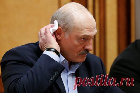 Вирусный психоз. Чтопроисходит вБелоруссии Лукашенко нехочет бороться скоронавирусом исоветует всем пить водку. Чтопроисходит вБелоруссии?