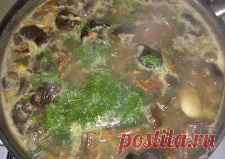Суп с лесными грибами Автор рецепта Нина Гроховская - Cookpad