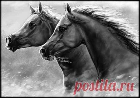 Схема вышивки «кони» - Вышивка крестом