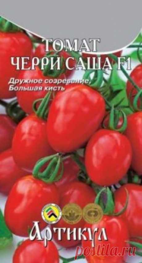 """Семена. Томат """"Черри Саша F1"""" (вес: 0.05 г) Всхожесть: 90 %. Раннеспелый (от всходов до первого сбора 90-95 дней), индетерминантный (высокорослый) гибрид.  Кисти бывают простые и сложные, в кисти может быть до 25 плодов.  Плоды сливовидной формы, ярко-красного цвета, изумительного вкуса, с бесколенчатым сочленением у плодоножки..."""