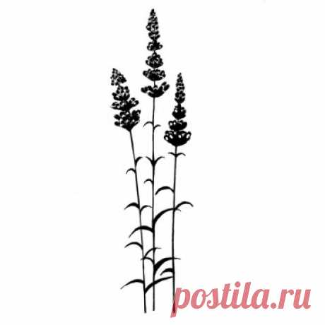 Lavinia Stamps  lavender - Lavinia - lavinia1099