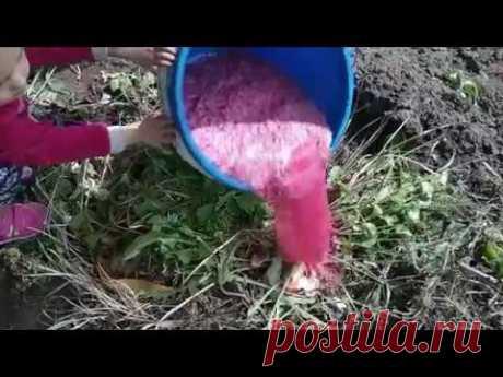 Зажигалка для компостной ямы