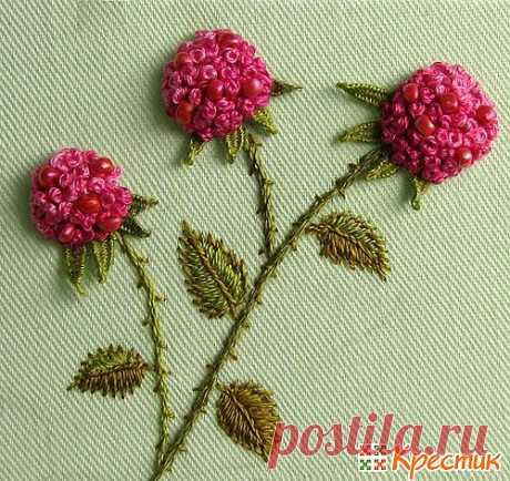 The French small knot in an embroidery