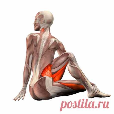Стречинг: лучшие упражнения на растяжку мышц – В Курсе Жизни