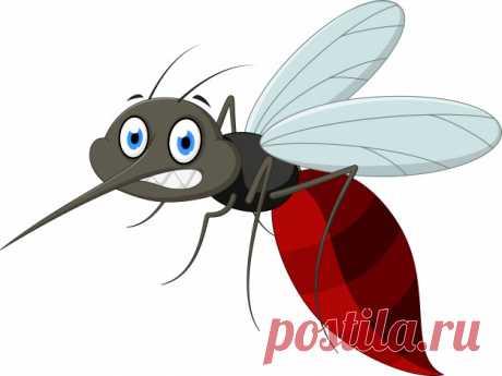 Как убрать зуд от укуса комара за 20 секунд | Болтай