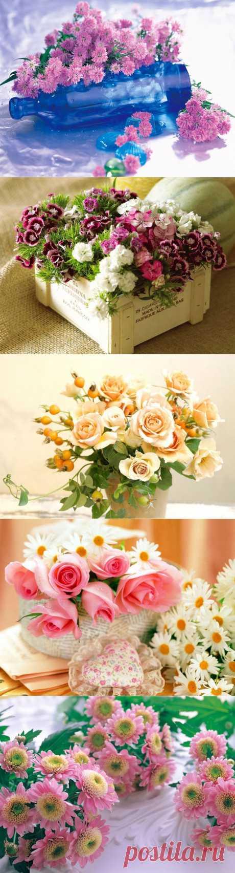 Красивые цветы   Удивительное и смешное в картинках