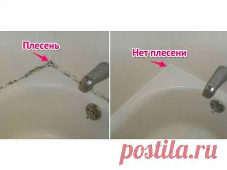 Черная плесень в ванной: как удалить?