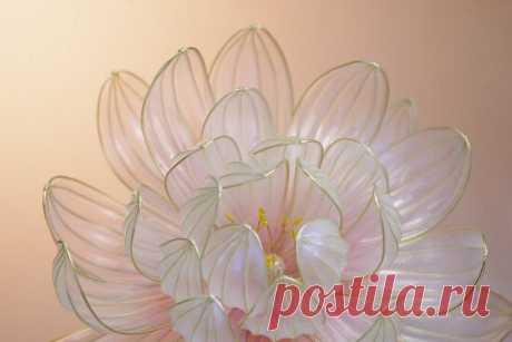 """Загадка удивительных """"стеклянных"""" цветов Канзаши. Мне удалось ее разгадать, и теперь я делаю их сама   ЛЕПЕСТОК КЛЕВЕРА   Яндекс Дзен"""