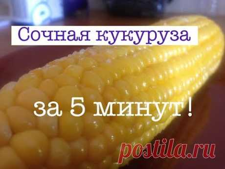 Boiled corn in 5 minutes | Corn in a microwave