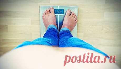 Этот продукт помогает сжигать жир даже во время сна Употребление творога перед сном не только не приводит к увеличению массы тела, но и помогает снизить количество жира в организме. Об этом свидетельствуют данные, опубликованные в British Journal of Nutrition...