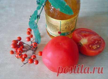 Что приготовить из красной рябины: блюда, напитки и консервация | Статьи (Огород.ru)