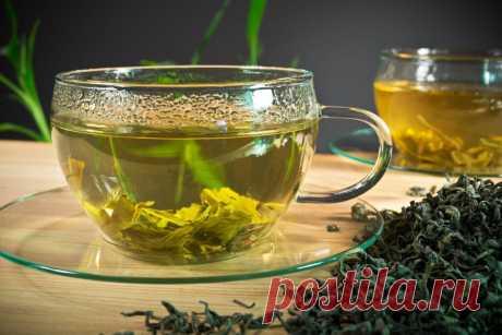 Как очистить организм от шлаков при помощи зеленого чая | Tabulo