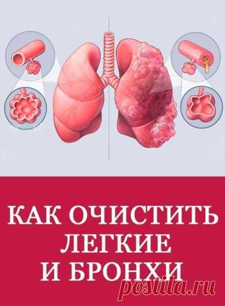 Поиск на Постиле: вязание для полных