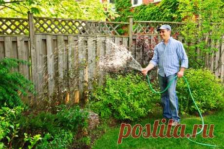 🏡Почему сад и огород делает нас счастливее: 5 причин. Как создать органический сад иогород