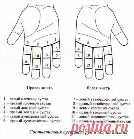 Су-джок терапия для суставов