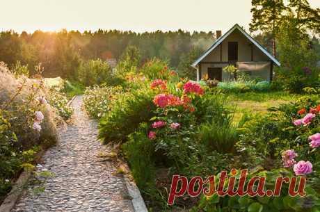 Как арендовать земельный участок с правом выкупа? — 6 соток