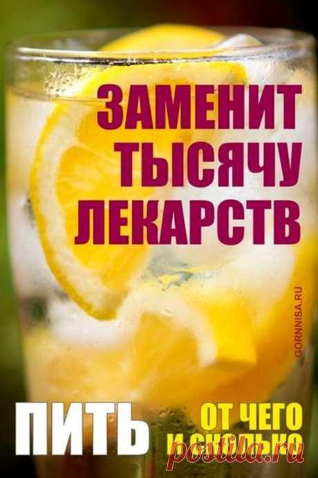 Вода с лимоном натощак заменит тысячу лекарств   ГОРНИЦА