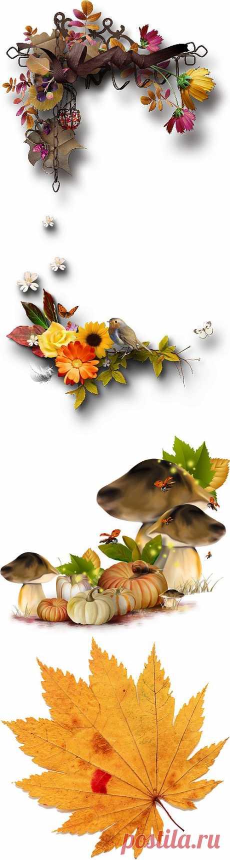 Осенний клипарт,декор PNG.