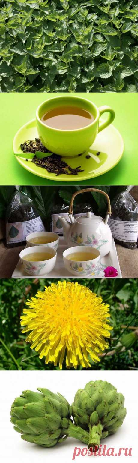 (+1) тема - 10 травяных чаев в помощь худеющим | Диеты со всего света