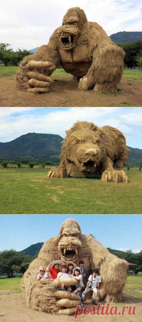 Удивительные соломенные гиганты | ФОТО НОВОСТИ