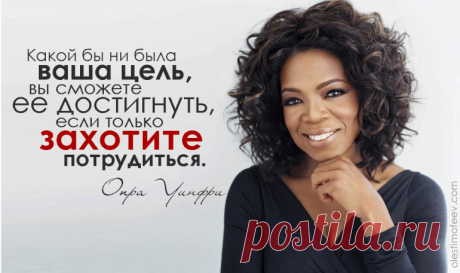 100kursov.com | Екатерина Митько (Орловская)