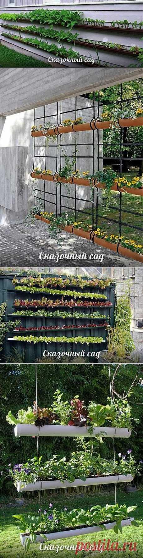 нашла еще идею / Сад и огород / PassionForum - мастер-классы по рукоделию