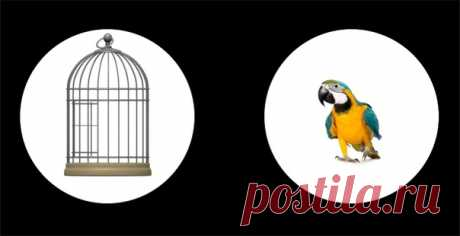 ⌘ ЗАРЯДКА ДЛЯ ГЛАЗ ⌘  Посади попугая в клетку!  Перед вами одно из сильнейших упражнений для тренировки зрительной системой и осознанного управления мышцами глаз. Показать полностью...
