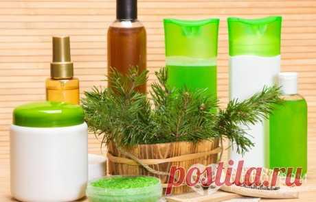 House natural problem hair shampoos: 12 recipes