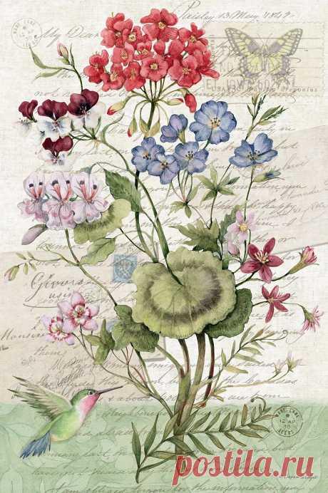 Нет ничего прекраснее цветов, их совершенство безгранично... Художница Susan Winget.