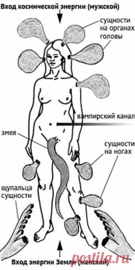 Энергетические паразиты - способы защиты от паразитов   РОДоСВЕТ