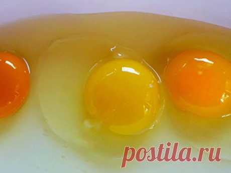 Какого цвета должны быть яичные желтки, секрет подбора куринных яиц!