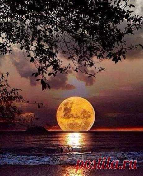 Мир — это отражение нас самих. Если мы смотрим на него с радостью и добротой, то и он тем же нам отвечает…