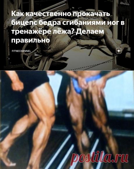 Как качественно прокачать бицепс бедра сгибаниями ног в тренажёре лёжа? Делаем правильно | fitnechannel | Яндекс Дзен