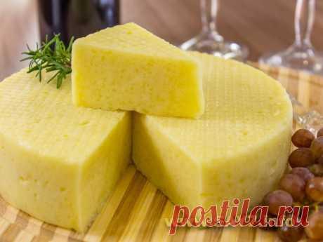Рецепт самого вкусного домашнего сыра