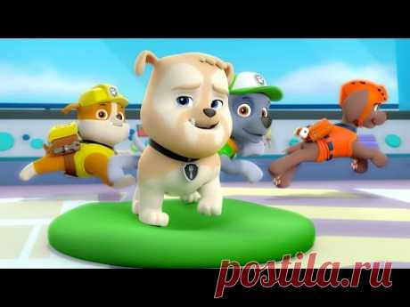 PUPPYISH PATROL in Russian 2017 Puppyish patrol the animated film all new series in a row 2nd season 7